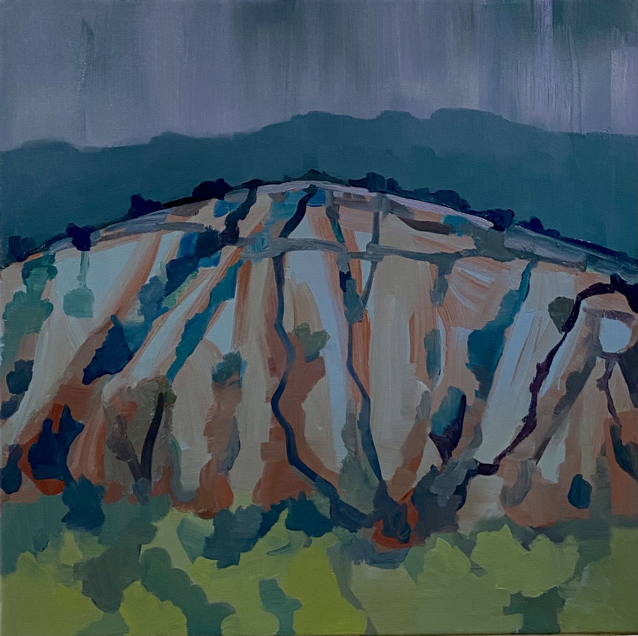 Rain curtain over mountains