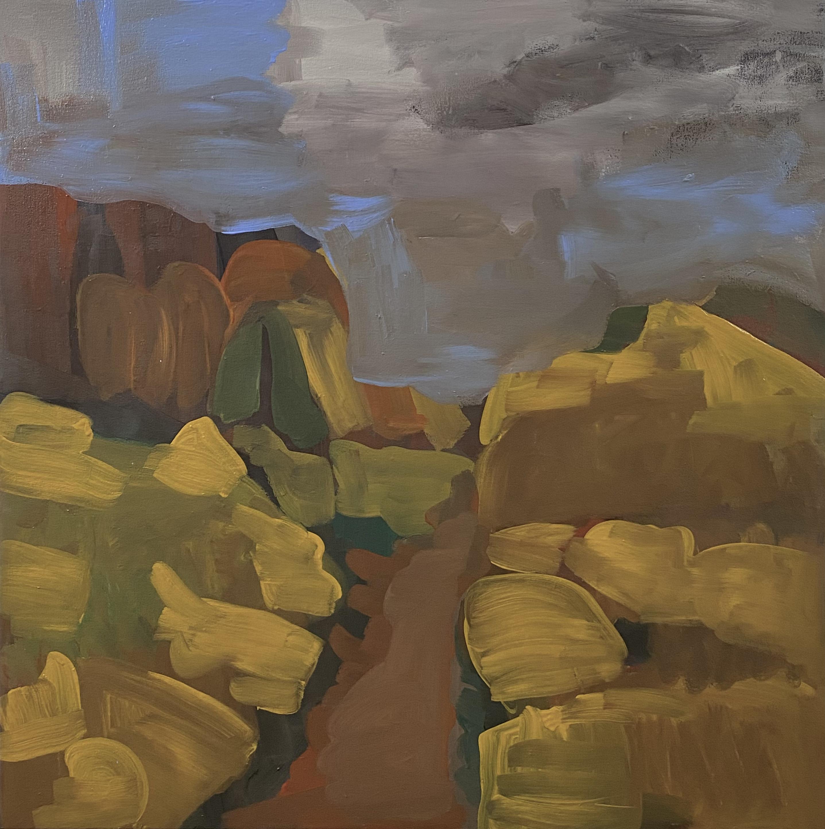 The Socorro Mountains