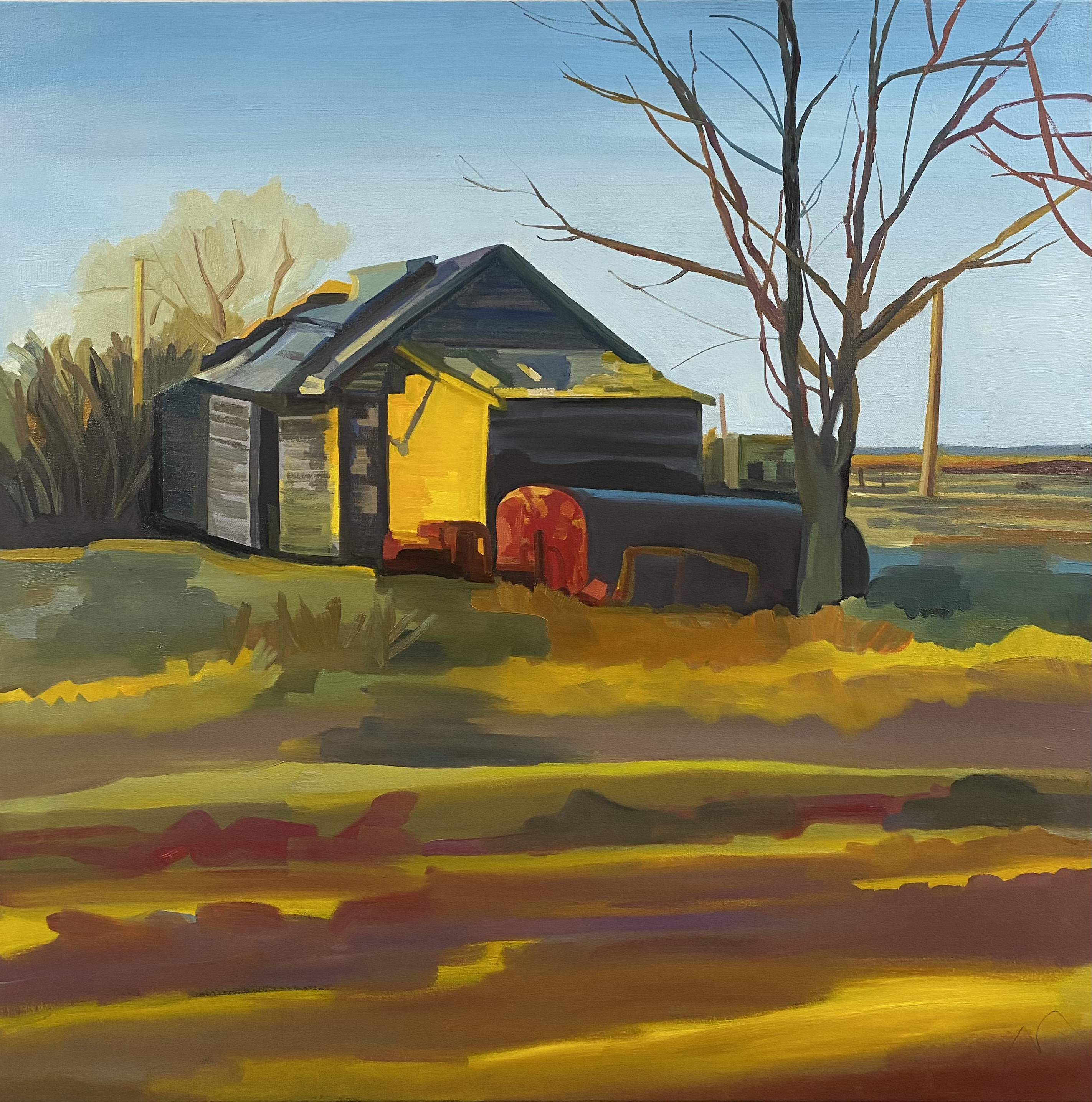 Prairie light (6am)