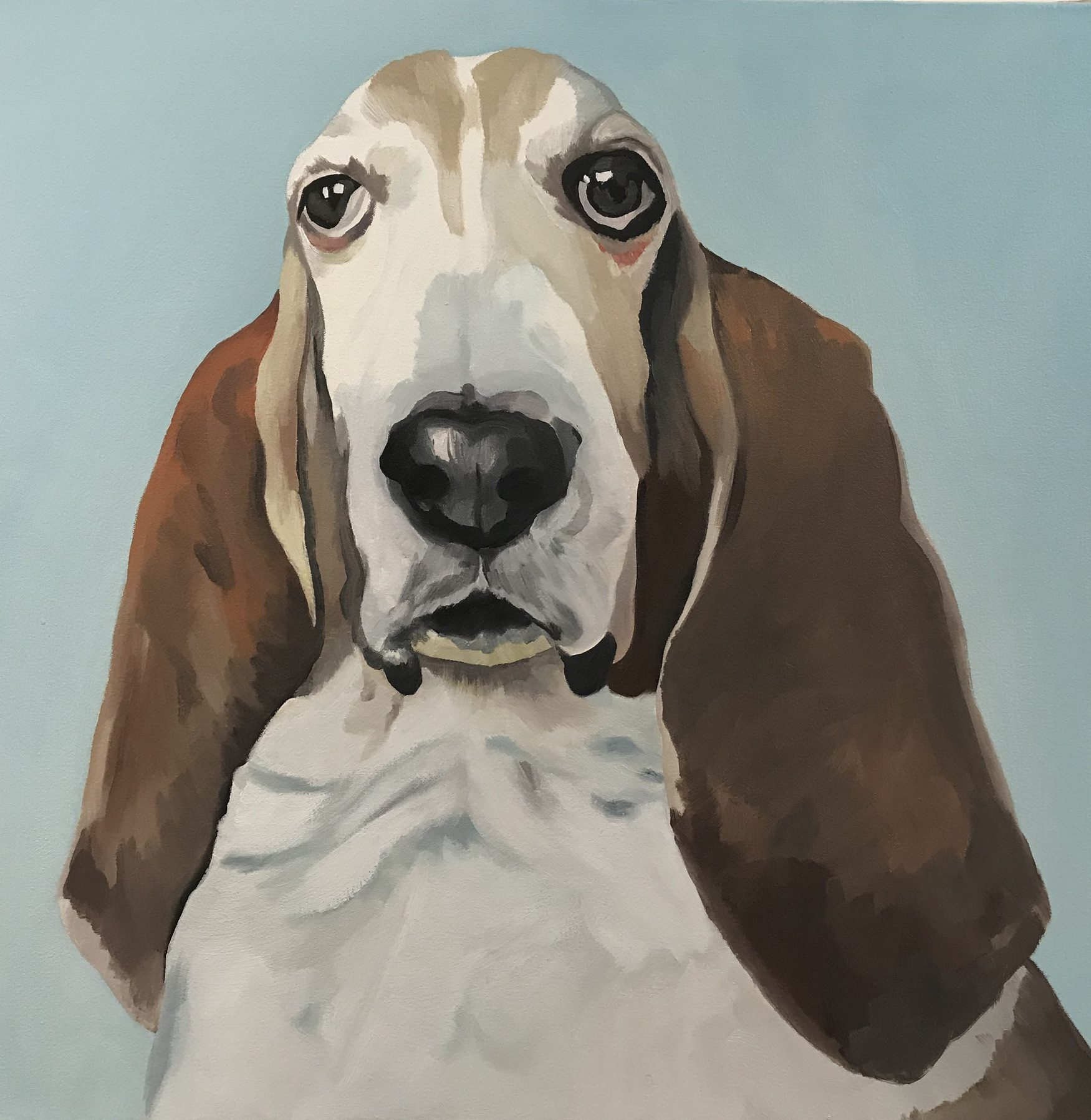 """Sherman (the Dog with Wings), oil, 26"""" x 26"""", sold"""