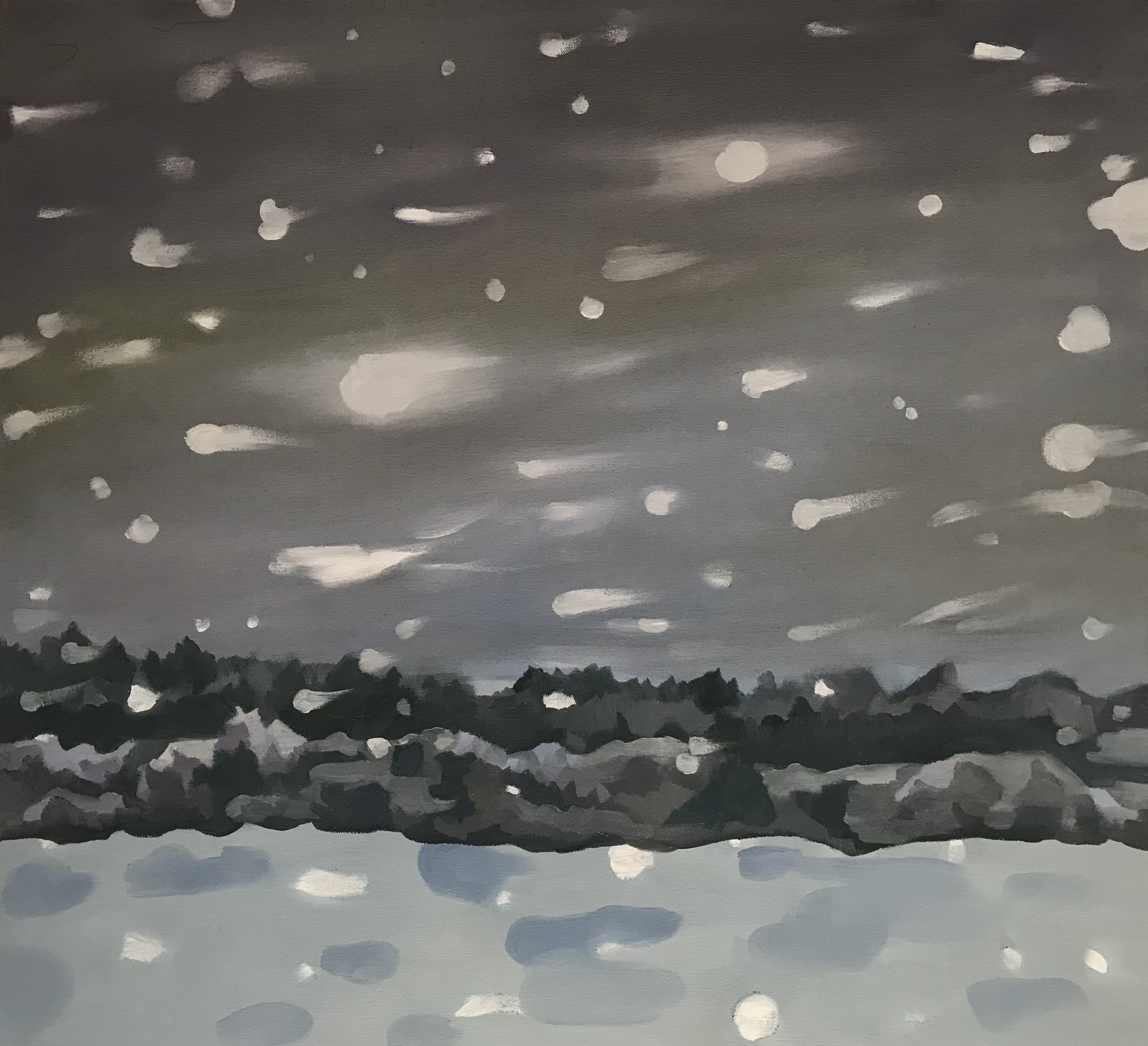 Driving Through Flying Snow